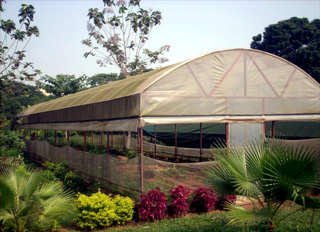 Poly house project in haryana