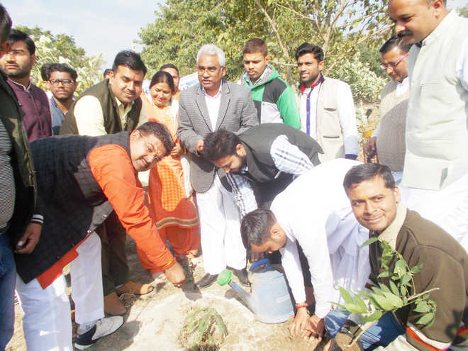 Only large-scale plantation can save ecology: Madan Kaushik