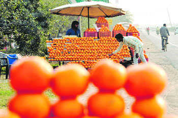 Fdi In Marketing Of Food Products