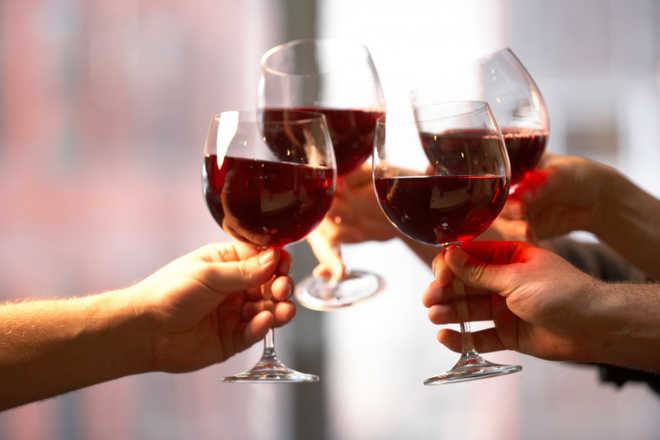 Compound found in wine may counteract effects of high fat diet