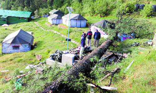 & Two killed as tree falls on tent in HP