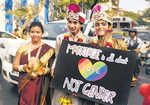 Lesbians, gays, bisexuals not third gender, SC clarifies