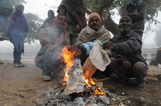 Cold wave claims another life in city