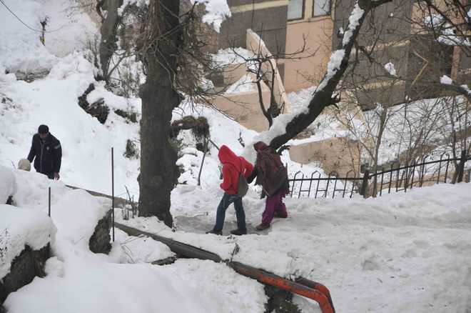 Snow turns fatal for kidney patient in Shimla