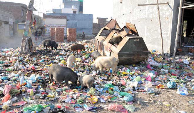 Civic issues trouble residents of Kot Khalsa