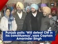 Punjab polls: 'Will defeat CM in his constituency', says Amarinder