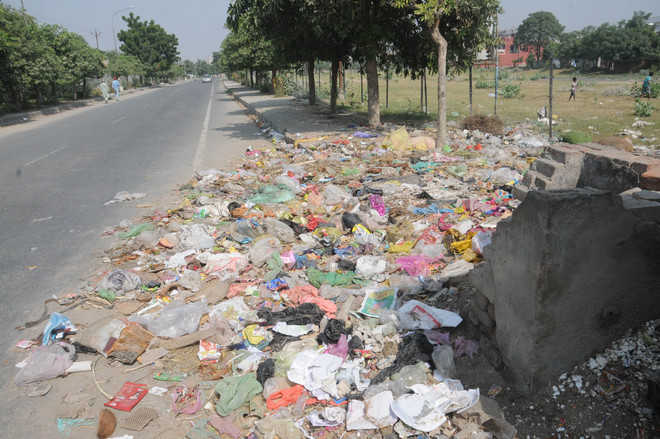 Despite tall MC claims, heaps of garbage present in city areas