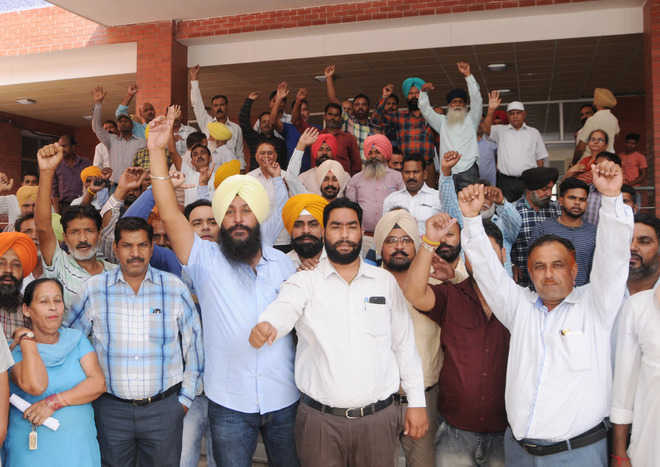 MC staff stage protest against non-payment of wages