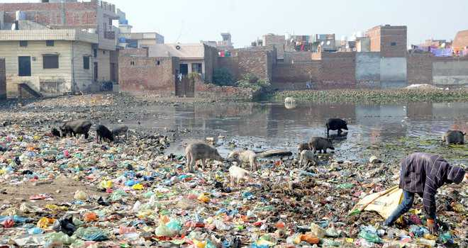 Poor sanitation biggest issue
