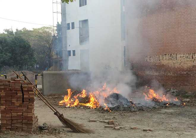 Burning of dry leaves troubles joggers at Govt Medical College