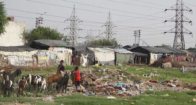 Residents fume over poor sanitation in Ward No. 17