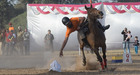 A rider shows his skills in 'Equitation tattoo and horse show' during the Military Literature Festival at the Secretariat Ground, Sector 3 in Chandigarh, on December 6. Tribune photo: Ravi Kumar