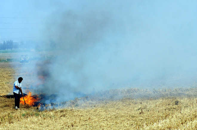 Burning stubble:Satellites to keep a watch on farmers