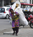 A rag picker picks up scrap on International Women's Day in Amritsar on March 8, 2017.Tribune photo: Sunil Kumar