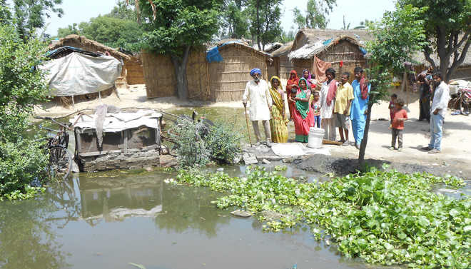 Drainage water a bane for  Fateh Jalal villagers