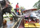 With assist from its mahouts, elephants blow water from its trunk to tourists on motor-tricycle or Tuk Tuk at Songkran or ancient Thai New Year celebration in Ayutthaya province, central Thailand, on April 11, 2017. AP/PTI photo