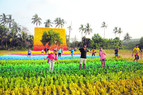 A 'carpet of joy' for Goa's happiness
