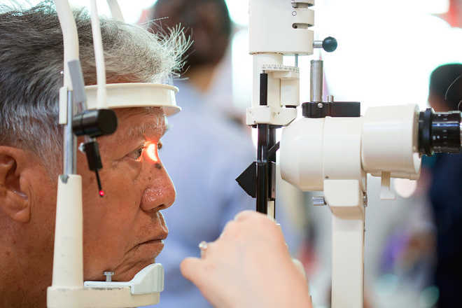 New eye drops to treat age-related blindness developed