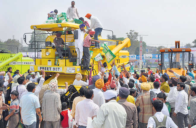 Punjab economy grounded by overstay in agriculture