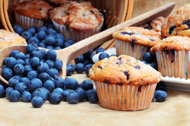 New blueberry muffin may lower heart disease risk