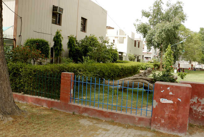Encroachments on park land go on unabated