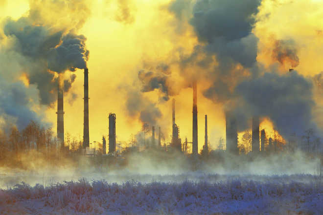 Air pollution may cause DNA damage in children