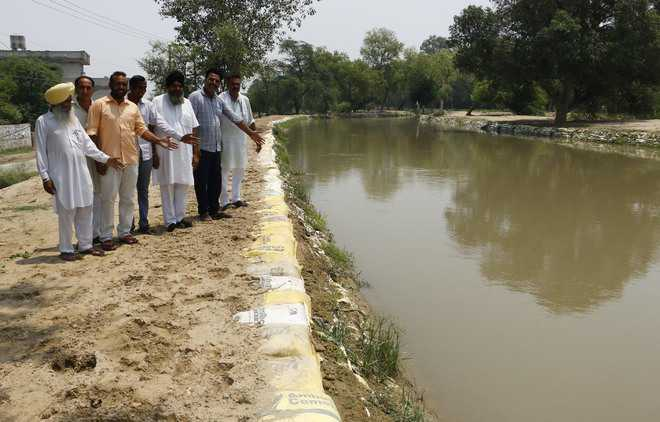 Inundation threat looms as Sirhind canal embankments get eroded