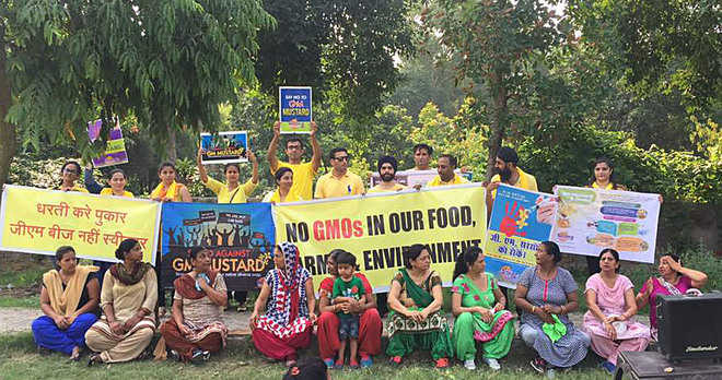 Protest held against genetically modified mustard crop