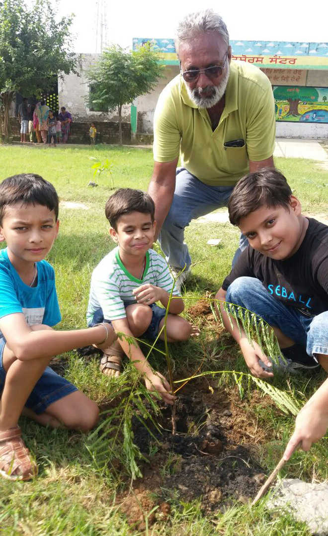 NGO carries out plantation drive