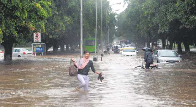 How we created 'rivers' of Chandigarh