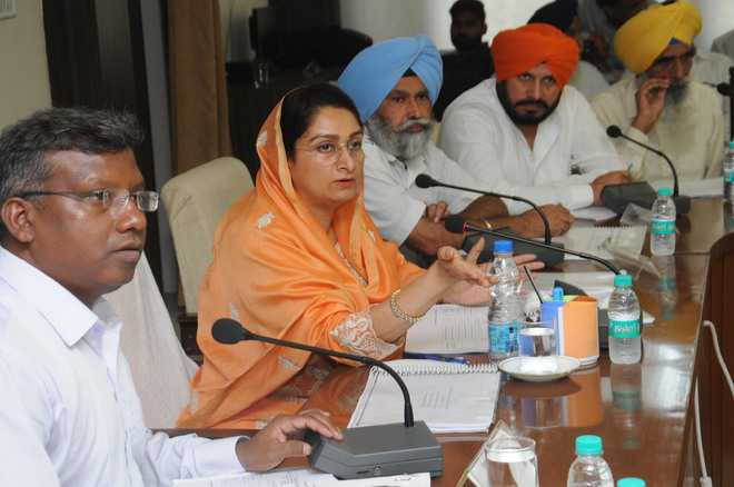 Harsimrat reviews ongoing works of Central Government