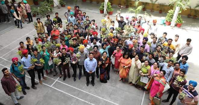 City colleges swathed in patriotic colours