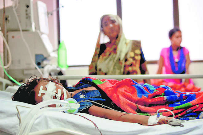 How a toxic system led to sudden deaths in UP