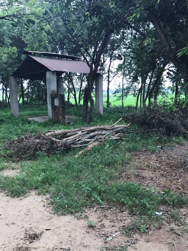 No peace for the dead at Lohgarh cremation ground