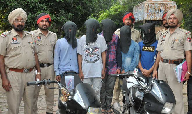 Gang of snatchers busted, five arrested
