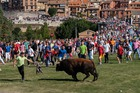 A bull is followed by festival-goers at the Toro de la Vega in the central Spanish town of Tordesillas, on September 12. AFP