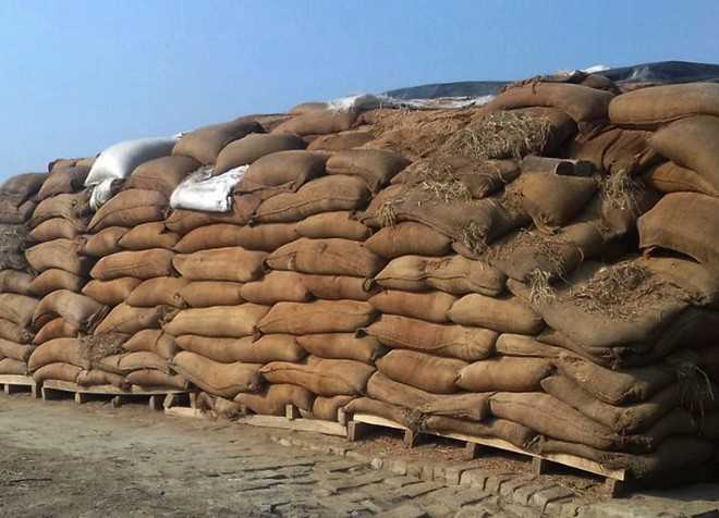 Dept to auction 4,100 quintals of damaged wheat