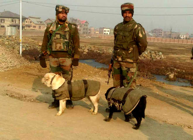 IED recovered on Srinagar-Muzaffarabad highway