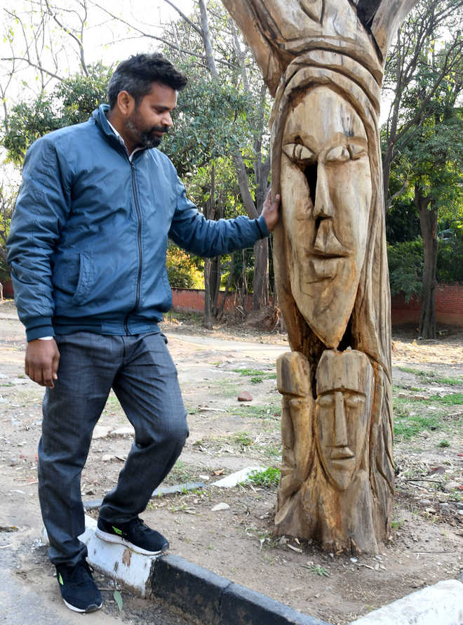 MC stops artist from sculpting dead trees