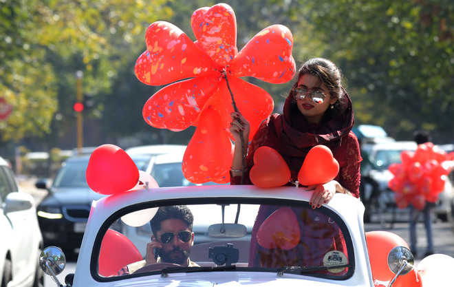 Roses from Bengaluru, Pune fill love in city's air