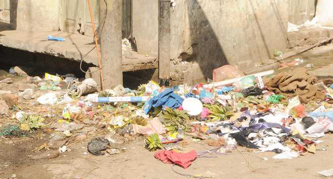 1,275 sanitation-related challans, city undeterred