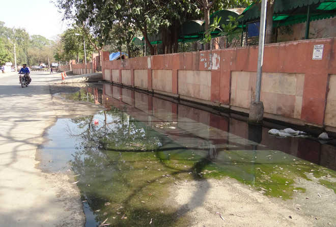 Sewage overflow outside DAC irks residents