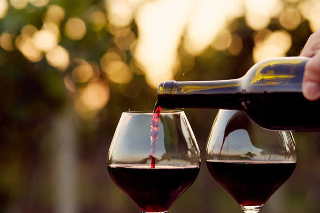Wine may be good for oral health