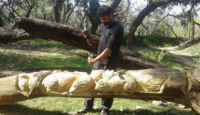 Tree sculptor shifts base to forest area near Sukhna