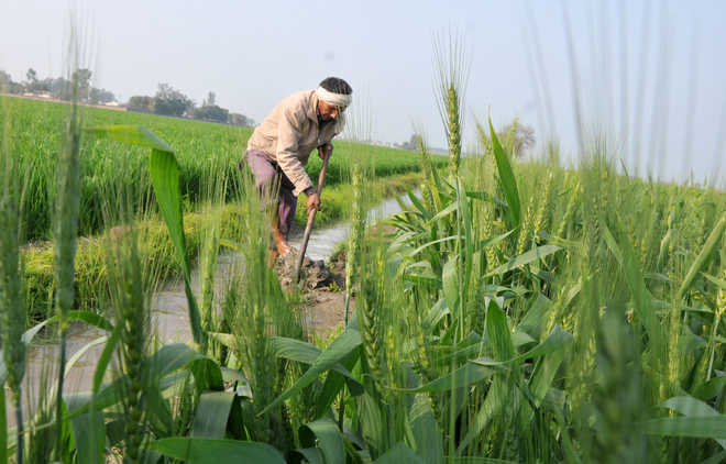 Not in favour of farm loan waiver, govt tells Parliament