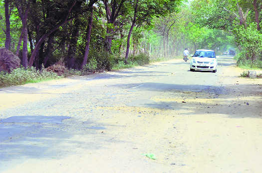 Road connecting Nabha with Sangrur in a shambles