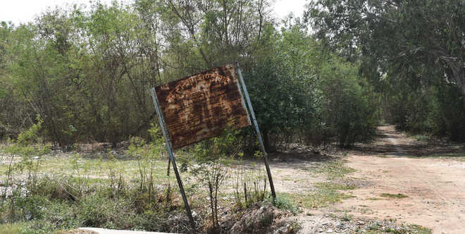 Vacant land turns haven for miscreants in Sec 50