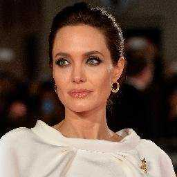 Angelina Jolie's son Knox learning to fly plane