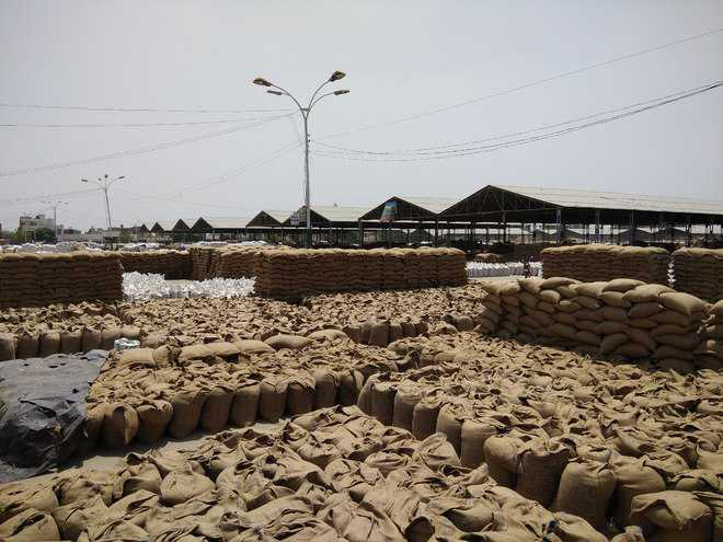 Farmers upset over tardy pace of lifting wheat