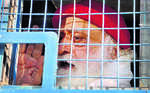 Asaram gets jail till death